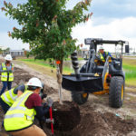 I-4 Ultimate Landscaping Efforts Kick Off