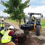 I-4 Ultimate Landscaping Efforts Kick Off